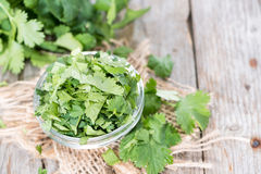 Small bowl with Coriander stock images