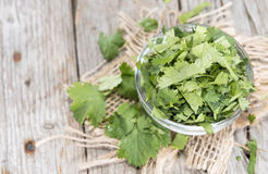 Small bowl with Coriander Royalty Free Stock Images