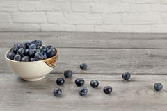 Small bowl full of blueberries, some of them spilled on gray woo. D desk royalty free stock image
