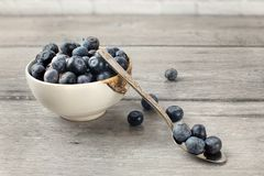 Small bowl full of blueberries, with spoon and some spilled berr. Ies on the gray wood desk Royalty Free Stock Images