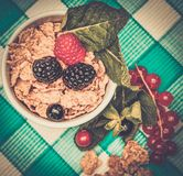 Small bowl with muesli and fresh berries Royalty Free Stock Photos