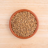Small bowl of red winter wheat berries on wood table Stock Images