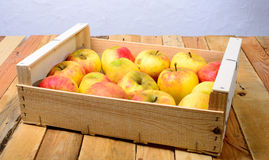 Small box of apples Royalty Free Stock Photos