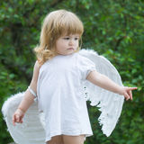 Small boy in angel wings Stock Photography