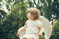 Small boy in angel wings Royalty Free Stock Photography