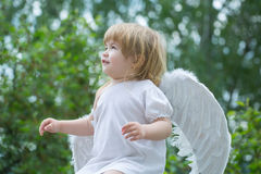 Small boy in angel wings Royalty Free Stock Photo