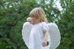 Small boy in angel wings Stock Images