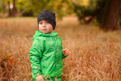 Small Boy in the Autimn Grass. Small boy with hat in the green jacket among the high autumn grass Royalty Free Stock Photo