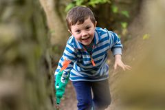A small boy in bright clothes climbs through a forest whilst smiling royalty free stock image
