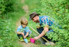 Small boy child help father in farming. Eco farm. father and son in cowboy hat on ranch. hoe, pot and shovel. Garden. Equipment. happy earth day. Family tree royalty free stock images
