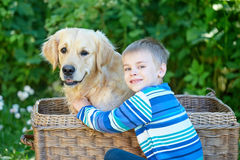 Small boy and cute dog in basket royalty free stock image