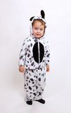 Small boy in the dalmatine costume. Looking curious Royalty Free Stock Images