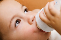 Small boy drinking from a bottle Royalty Free Stock Photo