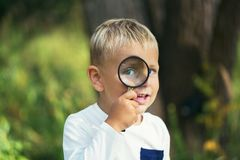 A small boy explores with a magnifying glass plants and insects stock photography