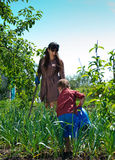 Small boy gardening with his mother Royalty Free Stock Photography