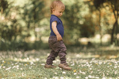Small boy in the green grass Royalty Free Stock Photos