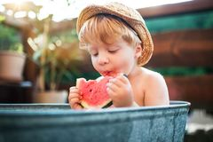 Small boy with a hat in bath outdoors in garden in summer, eating watermelon. Happy small boy with a hat in bath tub outdoors in garden in summer, eating stock photography