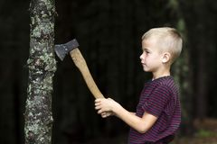 Small boy with heavy old iron axe cutting tree trump in forest on summer day. Outdoor activities and physical labor. Small boy with heavy old iron axe cutting royalty free stock photography