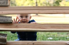 Small boy hiding behind a fence. Outdoor activity game concept. Stock Images