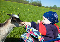 Small boy and kid Stock Photography