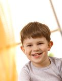 Small boy laughing Royalty Free Stock Images