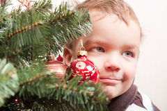 Small boy looks out for christmas tree Stock Photos