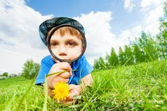 Small boy with magnifier and yellow flower Royalty Free Stock Photos