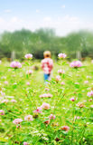 Small boy playing on a meadow stock photos