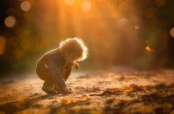 Small boy playing in outdoor in autumnal light. Caucasian kid with curly hair Stock Photos