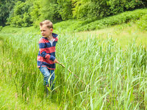 Small boy playing with a stick in nature Stock Images