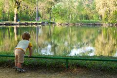 Small boy on the pond beach and looking around landscape Stock Photos