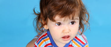 Small  boy portrait Royalty Free Stock Images