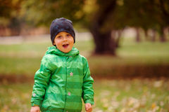 Small boy posing. Small boy in the green jacket and hat posing in the autumn park Royalty Free Stock Photography