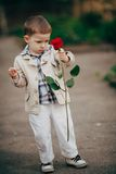 Small boy with red rose Stock Photo