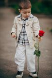 Small boy with red rose Stock Photography