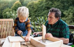 Small boy with senior grandfather in wheelchair constructing birdhouse, diy project.