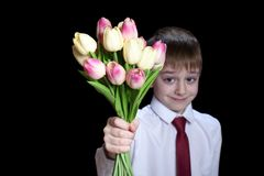 1d8ddeaaf61c Small boy in a shirt with tie holding a bouquet of tulips. Isolate on black