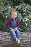 Small boy sitting on the old tree trunk in the park stock photography