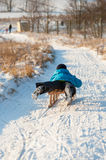 Small boy sledging downhill Royalty Free Stock Photography