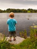 Small boy standing on lake shore Stock Image