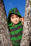 A small boy standing between trees Stock Photos