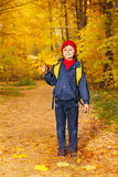 Small boy stands with bunch of yellow maple leaves Stock Photo