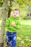 The small boy walks on a green glade with an apple Royalty Free Stock Image