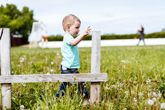 Small boy woking in nature Royalty Free Stock Images