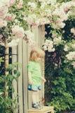 Small boy on wooden chair near rose bush Stock Photo