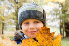Small boy and yellow leaves Stock Image
