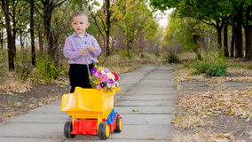 Small boy with yellow truck and flowers Stock Photos