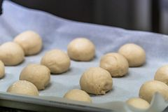 Small Bread Dough Balls Placed on Cooking Paper on Pan - Ready t royalty free stock image