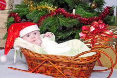 Small breast child in basket Stock Photo