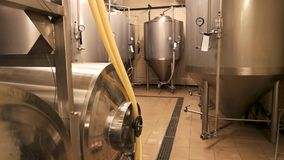 Small brewery, craft beer production. Beer tanks, brewery tanks in brewery storage stock video footage